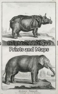 25-304 - Animals - Rhino and Elephant Buffon - circa 1770 Copperplate engraving 20cm X 33cm Condition A+