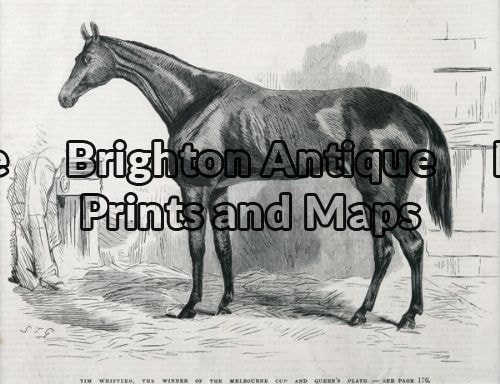 25-316 – Animal – Horse Racing Melbourne Cup S T Gill – circa 1867 Wood engraving 23cm X 18cm Condition A+