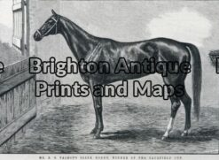 25-317 - Animal - Horse Racing Caulfield Cup F Sleap - circa 1884 Wood engraving 22cm X 15cm Condition A+