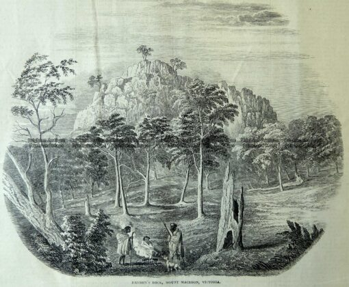29-481  Dryden's Rock Mount Macedon  c.1867