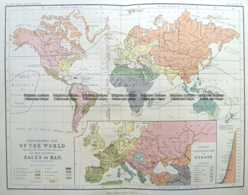 3-388 World  Races of Man by Johnston c.1851