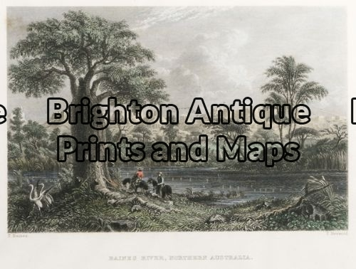 31-443 – Queensland – Baines River T Baines – circa 1873 Hand coloured steel engraving 19cm X 13cm Condition A+